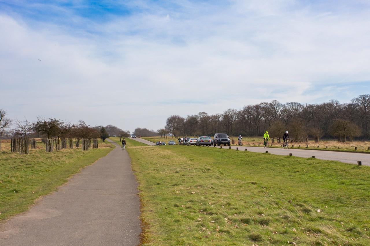 英国伦敦里士满公园Richmond