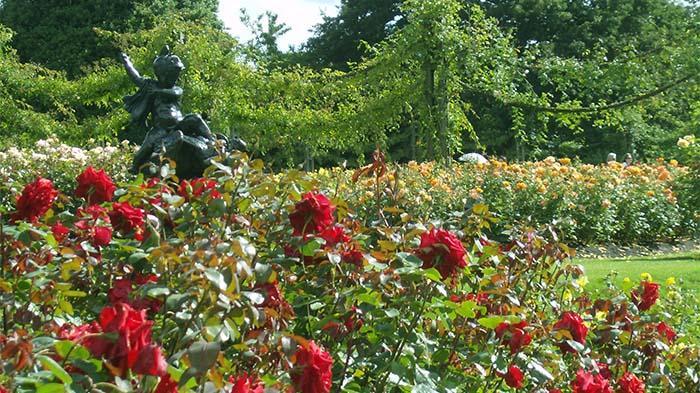 玛丽皇后园(Queen Mary's Gardens)