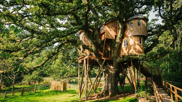 Treetops树屋