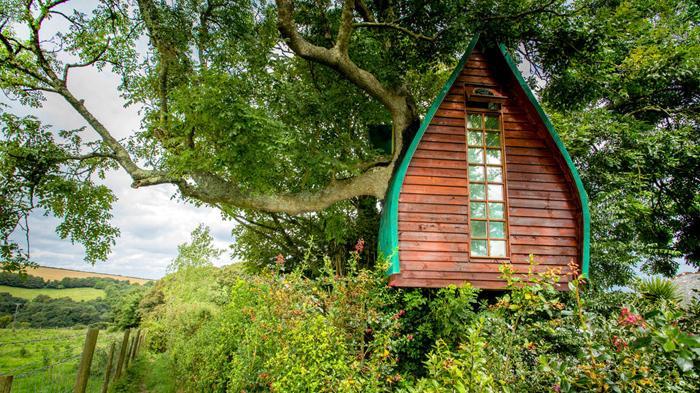 Tree Sparrow House