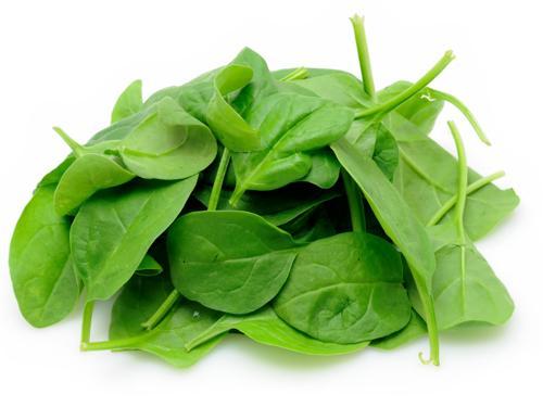 Baby Spinach 嫩叶菠菜
