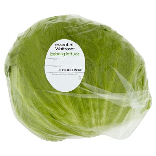 Iceberg Lettuce 结球莴苣