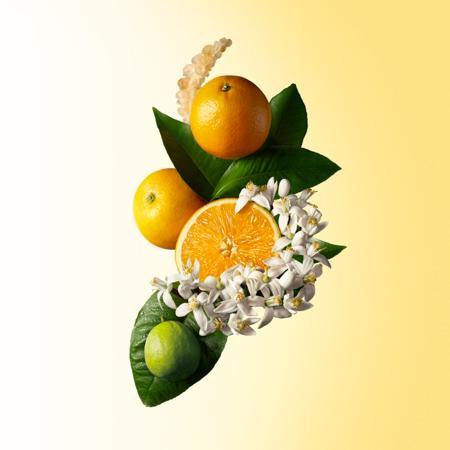 Molton Brown Orange & Bergamot Aroma Reeds(香薰)
