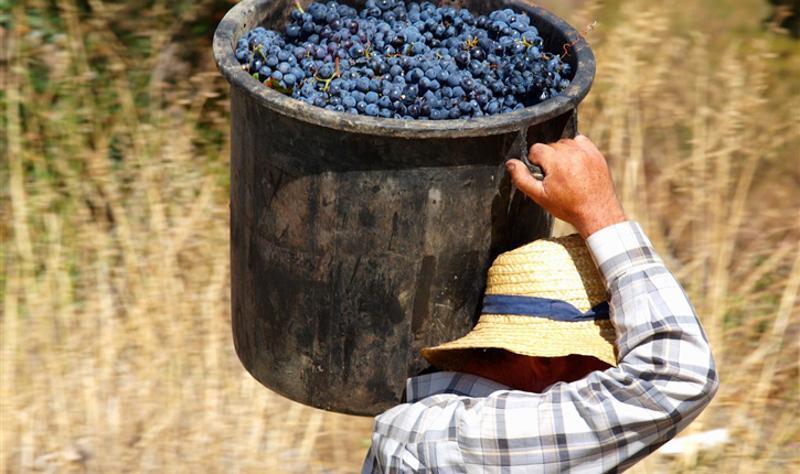 葡萄牙国酒