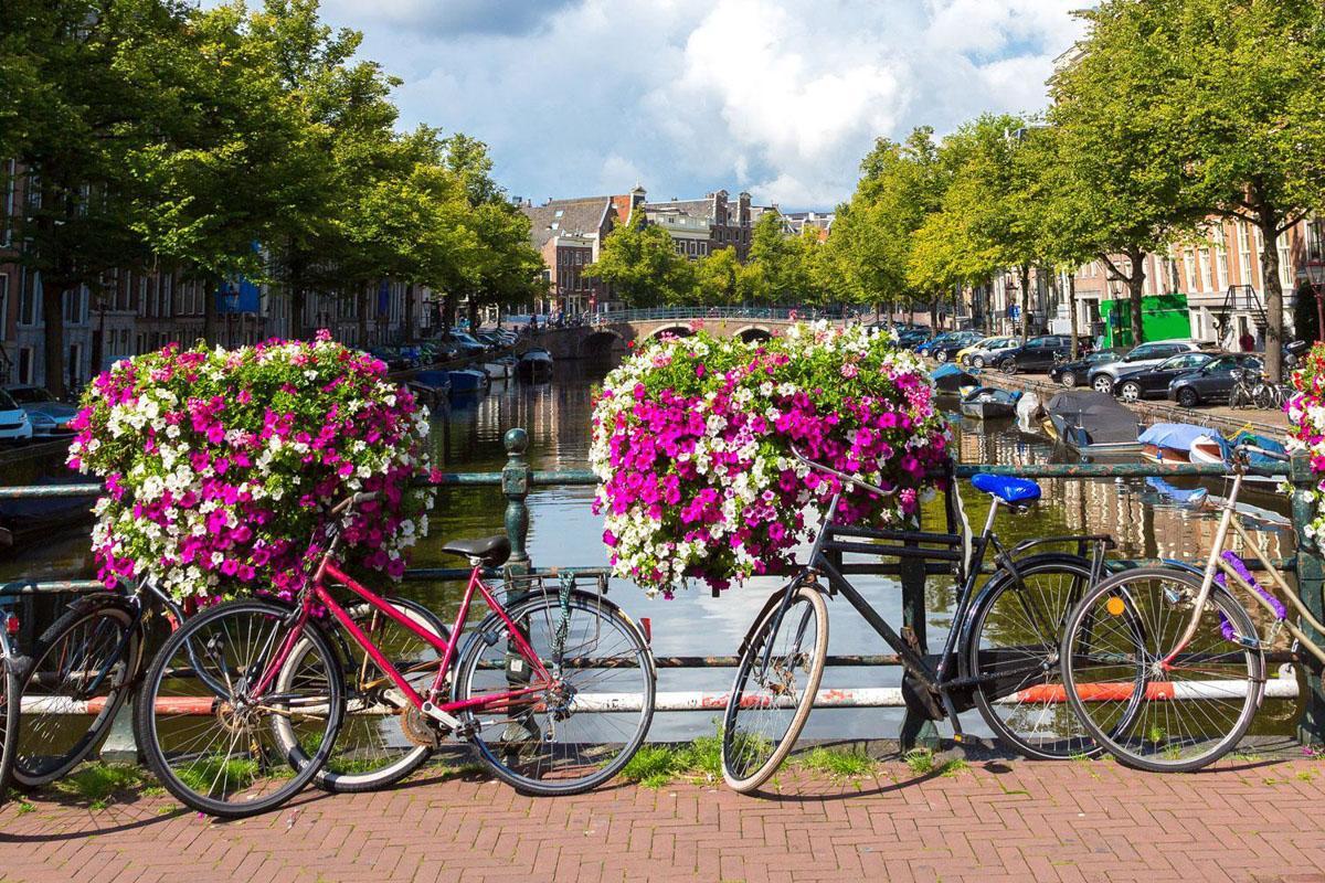 阿姆斯特丹的自行车
