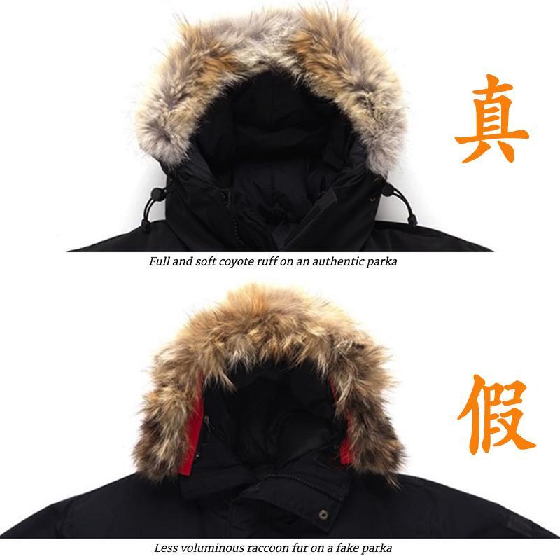 加拿大鹅羽绒服真假皮毛环领对比